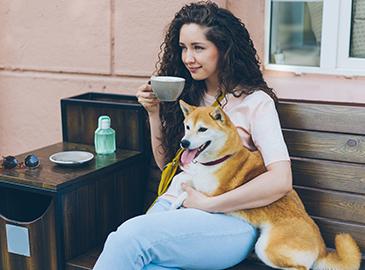 dog and coffee shop